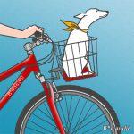 自転車と犬/2010